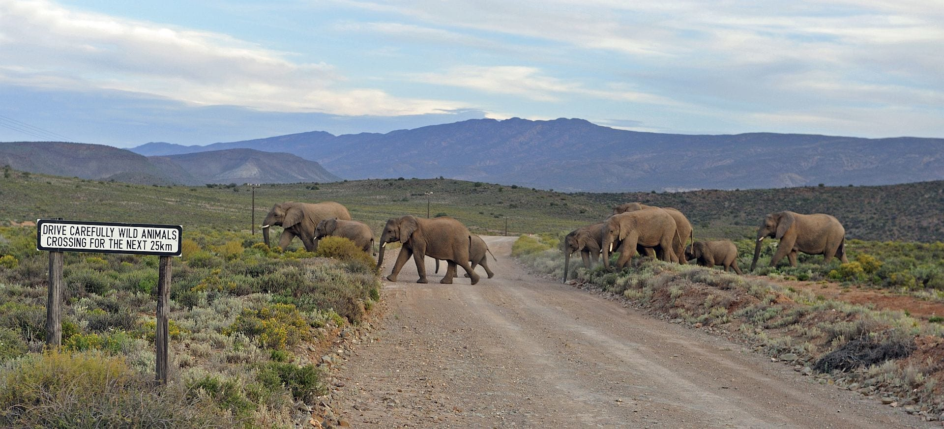 The Road Less Travelled in South Africa