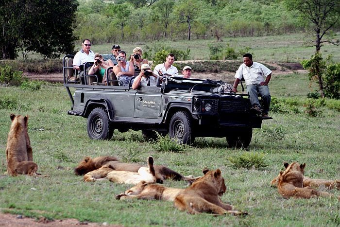 Sabi-Sands-Savanna-game-drive, southern african safaris