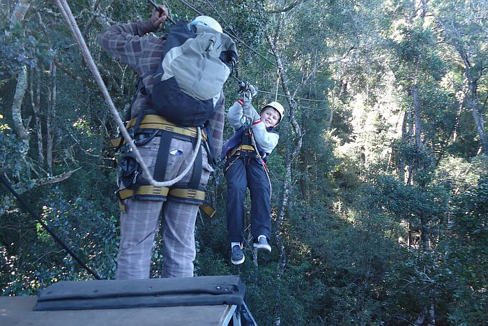 Our Treetop canopy tour