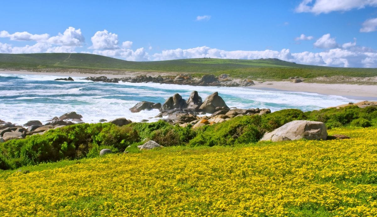 accommodation in South Africa - Langebaan